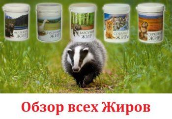 Обзор животных жиров