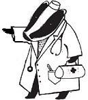 Изображение - Конский жир для суставов %D0%9B%D0%BE%D0%B3%D0%BE-%D0%B1%D0%B0%D1%80%D1%81%D1%83%D0%BA-%D0%BB%D0%B5%D0%B2